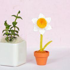 Daffodil uncinetto, padrona di regalo, fiori  25.00