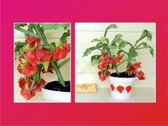 Origami Strawberry Plant - YouTube
