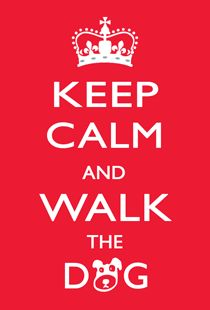 #keepcalm and walk #floppy. Me están empezando a gustar estas caminadas matutinas. #morning