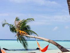 Maldives- Maafushi island 2014.11.09