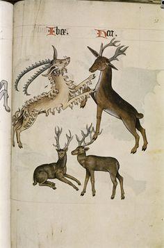 http://upload.wikimedia.org/wikipedia/commons/b/b4/The_Tudor_pattern_book_MS._Ashmole_1504_71.jpg