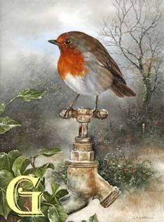 Carl Whitfield oil painting ROBIN ON TAP