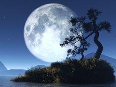 IMAGENSNET: NOITE DE LUA CHEIA - NIGHT OF THE FULL MOON