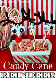 Candy Cane Reindeer ~ they are a really fun craft because they can be completely customized based on the color of candy canes you buy and the materials you use for their noses, eyes, and antlers