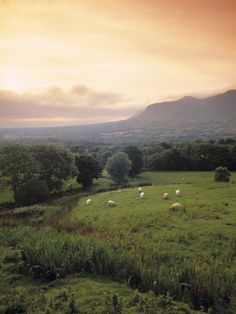 Ben Bulben, Yeats Country, Co. Sligo, Ireland Photographic Print by Doug Pearson at Art.com