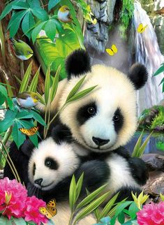 Imagen de panda, animals, and bear