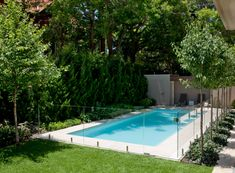 I prefer the pool to look like it's part of the total garden area, not just a one off on its own. This can be a challenge with pool fences having to enclose… Backyard Trees, Backyard Pool Landscaping, Small Backyard Pools, Swimming Pools Backyard, Swimming Pool Designs, Acreage Landscaping, Small Pools, Landscaping Ideas, Glass Pool Fencing