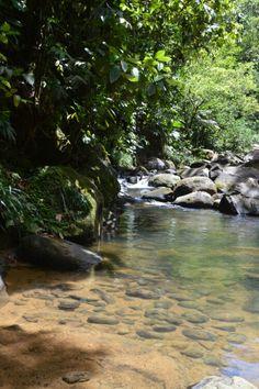 La rivière Quiock. Guadeloupe