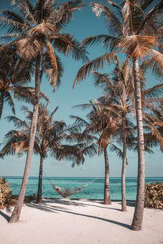 8 Things To Do at Club Med Finolhu Maldives Maldives Beach, Visit Maldives, Maldives Travel, Beach Photography Poses, Reef Shark, Dark Skies, Beautiful Sunrise, Travel Aesthetic, Island Life