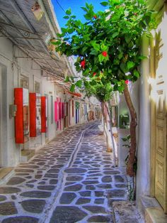 Paros Island, Greece, aah, memories!!!                                Source:pixdaus.com               » tagged   alley    greece    Europe    Island    Paros Island          7 months ago on 23  August 2011 @ 9:37pm     164 notes