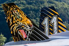 SwissAF F/A-18C Meiringen AFB Air Tiger, Cat Species, Big Cats, Three Dimensional, Airplanes, Illusions, 3 D, Aviation, Meet
