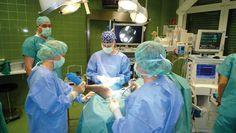 Vierbeiner im Spital « mein HAUSTIER mein HAUSTIER Armin, Health Magazine, Animals, Haus