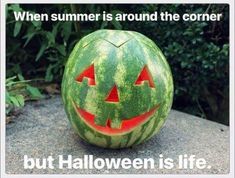 Halloween Humor – Summer's Coming My Heart It, Halloween Quotes, Halloween Pictures, Halloween Horror, Funny Halloween Memes, Spooky Memes, Fall Humor, Fall Memes, Holidays Halloween