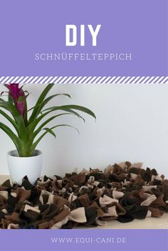 Do it yourself: Schnüffelteppich