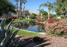Our comfortable 2BR/2BA Palm Springs vacation rental is getaway-ready. Unpack the Bermuda shorts, that novel you've been saving, the bathing suits, tennis rackets and sunscreen, then take advantage of the fantastic on-site amenities just outside this well-located condo. - Turnkey Vacation Rental Palm Springs Vacation Rentals, Rackets, Tennis Racket, Sunscreen, Bathing Suits, Bermuda Shorts, Golf Courses, Condo, Spa
