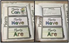 Last week, we started our plant unit. We always start our science units with our schema chart. Here are some more of the interactiv. End Of Year Activities, Science Ideas, Memory Books, Planting Seeds, Third Grade, May, Memorial Day, June, The Unit