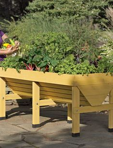 The VegTrug™ Patio Garden is a convenient, all-in-one growing system. Grow plants at an easy working height in this unique patio garden. The elevated beds mean no weeds and fewer pests!