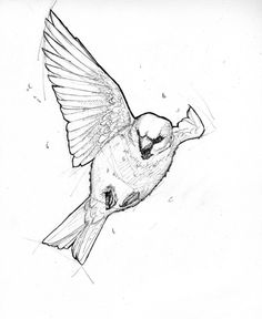 Sparrow - Ink by Bluecrow10