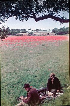 1930s England through newlywed eyes.