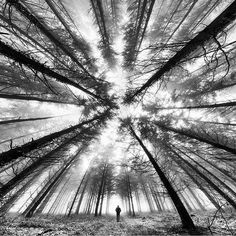 Photo by Francois Casanova