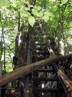 Abandoned roller coaster at Chippewa Lake Park.