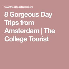 8 Gorgeous Day Trips from Amsterdam | The College Tourist