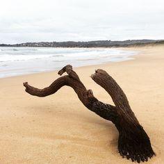 Made it to Apollo Bay. #wilddogbeach #apollobay #vic #australia #beachbum #beachwalk #topless #surfmist by themalkiainen http://ift.tt/1LQi8GE