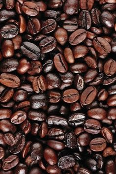 Coffee Beans Iron On HTV Vinyl for Shirts Printed Siser Heat Transfer