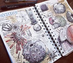 The cornerstone of good photography is the ability to take a photo that encompass your subject matter. That is why smart photography tips comes in handy. Kunstjournal Inspiration, Sketchbook Inspiration, Sketchbook Ideas, A-level Kunst, Artist Research Page, Gcse Art Sketchbook, A Level Textiles Sketchbook, A Level Art Sketchbook Layout, Academic Drawing
