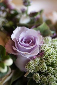 incensewoman:  heartofapril: Beautiful rose. The Incensewoman