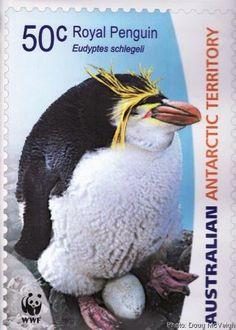 Australia-Territorio Antártico-Pinguino Real