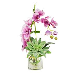 Tropical mauve orchid with succulent sits in glass vase with acrylic water.Features:Material: Silk polyester, acrylic, bamboo...