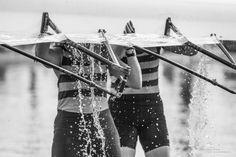 Het waterballet by vincent Tollenaar