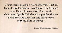 Aurochs Rouge - Chimeterre T1 par Tibéon Citation 01