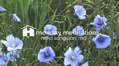 Enjoy this deeply relaxing guided meditation with Dr. Neha Sangwan. Once you are in a comfortable position, settle in to the soothing sounds and voice of Dr....