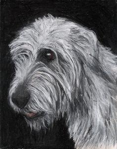 irish wolfhound :)