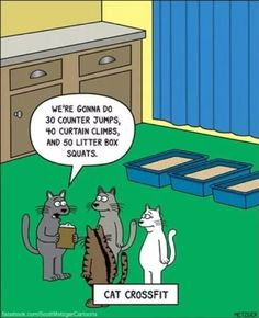 The Bent Pinky by Scott Metzger for September 2018 - GoComics Cat Jokes, Funny Cat Memes, Funny Cat Videos, Funny Cartoons, Cats Humor, Funny Stuff, Funny Animal Pictures, Funny Animals, Dog Cat
