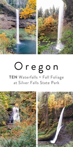 That's right - there are TEN waterfalls at Silver Falls State Park in Oregon! All on the amazing Trail of Ten Falls. Learn more about this Pacific Northwest USA travel bucket list spot along with lots of travel and photography tips! Fall is a great time to visit to see the gorgeous Fall leaves and foliage surrounding the waterfalls! #oregon #hiking #traveloregon #pnw Oregon Travel, Oregon Hiking, Travel Usa, Hiking Photography, Photography Tips, Northwest Usa, Silver Falls, Yellowstone Park, North Cascades