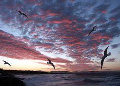 Sonnenuntergang Byron Bay, Australia - Traumhaft