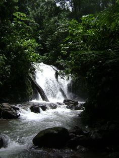 Quepos, Costa Rica - 3 months until I am there!