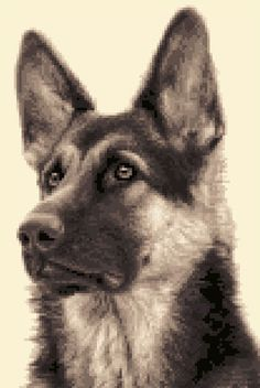 GERMAN SHEPHERD DOG, ALSATIAN full cross stitch kit