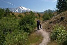 Best hikes in Washington for toddlers
