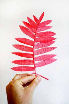 Colorful Crepe Paper Ferns is artistic inspiration for us. Get extra photograph about House Decor and DIY & Crafts associated with by taking a look at photographs gallery on the backside of this web page. We're need to say thanks in the event you wish to share this publish to …