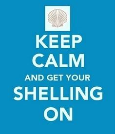 Get Your Shelling On