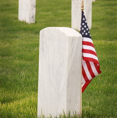 Today is Memorial Day. Marimark Mortgage takes a moment to gratefully remember the brave sacrifice men and women have paid to keep this great country free. #MarimarkMortgage Silk Roses, Pink Silk, Silk Flowers, Red Roses, Diy Craft Projects, Diy Crafts, Wall Backdrops, Leaf Coloring, Happy Memorial Day