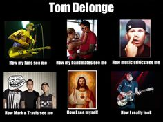 Music critics and bandmates are the only ones that are actually true - Tom Delonge.