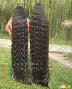 2 long hair girl down in the ground Really Long Hair, Super Long Hair, Hair Grower, Long Locks, Beautiful Long Hair, Hair Pictures, About Hair, Hair Lengths, Red Hair