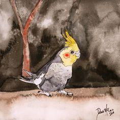 watercolor painting | square cockatiel pet bird original pet portrait watercolor painting ...