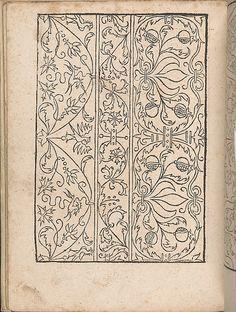 New Modelbüch allen Nägerin u. Sydenstickern (Page 17v).  Hans Hoffmann.  1556.