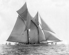 Mayflower. - Winner America's Cup 1886 2-0